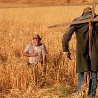 Find That Film: Dark Night of the Scarecrow