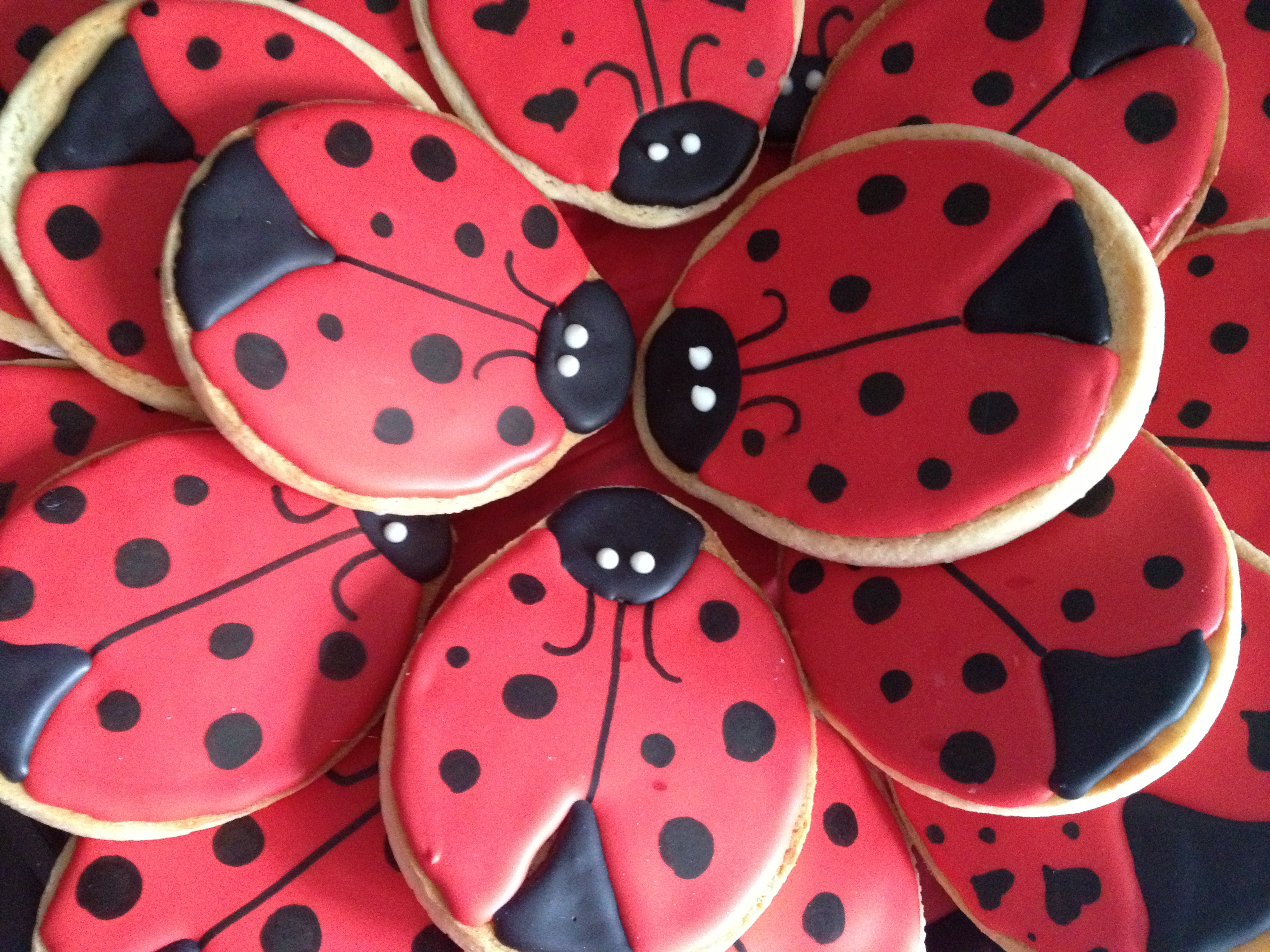 How To Make Ladybug Cookies By Victoria Two Girls