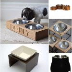 5 Stylish Feeding and Water Bowls for you Dog