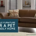 Durable Furniture for a Pet Friendly Home