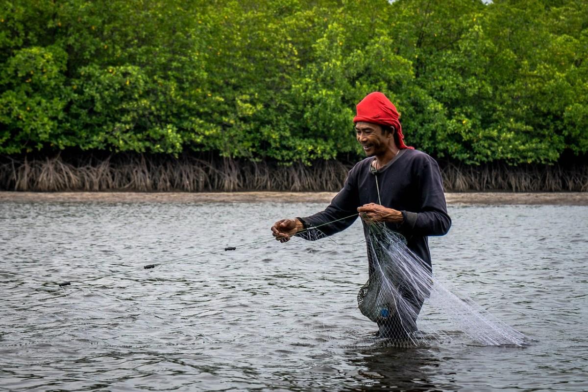 fisker phang nga thailand