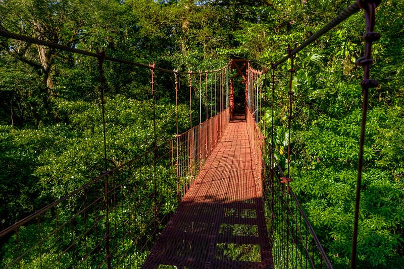 monteverde hængebro