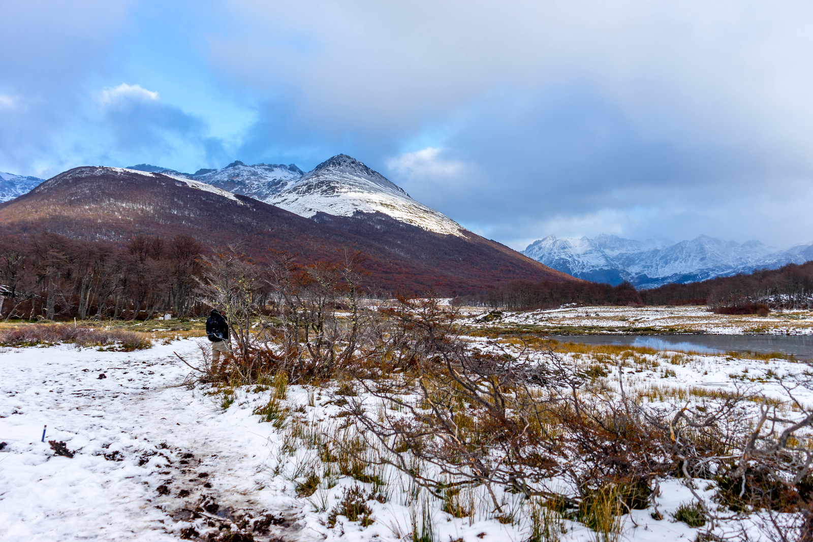 patagonien billeder ildlandet
