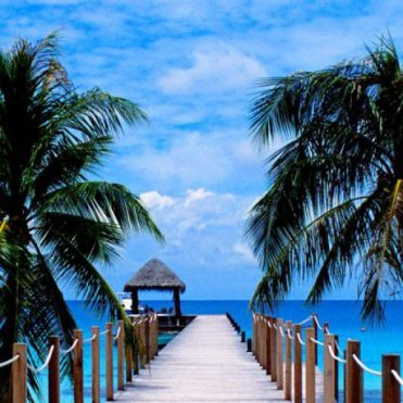 cropped-cropped-47770224-tropical-beaches.jpg