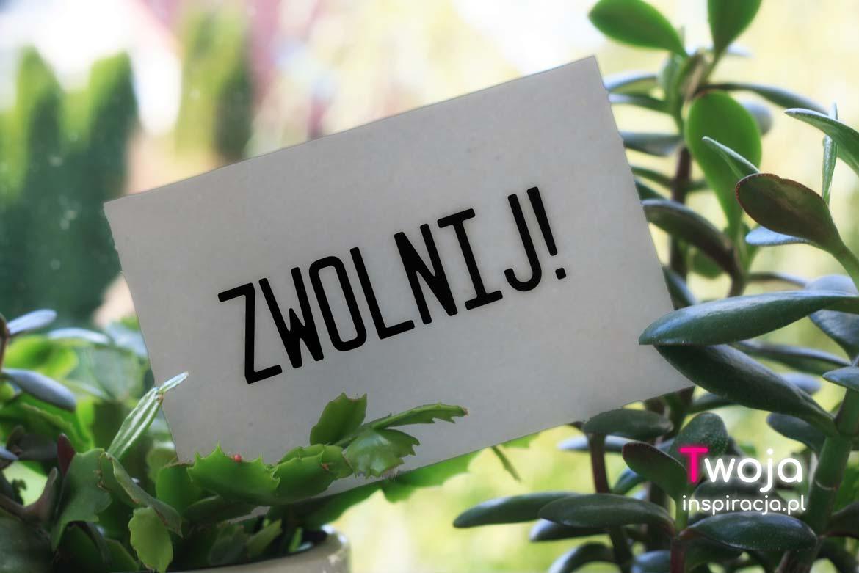 Wizytówka wśród roślin z napisem zwolnij