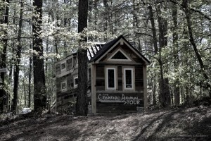 Creative Animal Tiny House in Indian Springs State Park