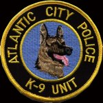 Man Chokes Police Dog