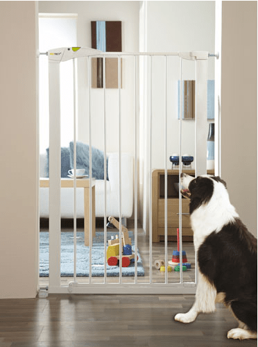 How To Keep Your New Dog Or Puppy Safe Using A Pet Gate