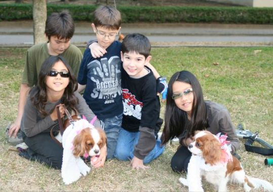 hong kong kids and dogs