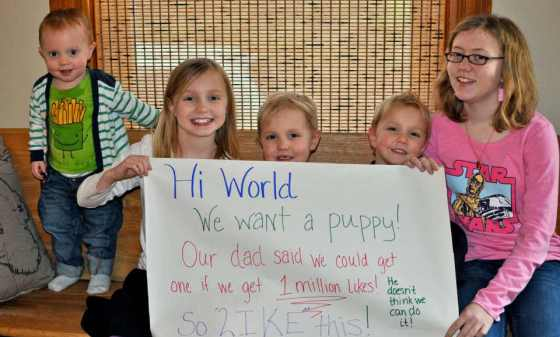 Faceboook Campaign to convince parents to get a pet