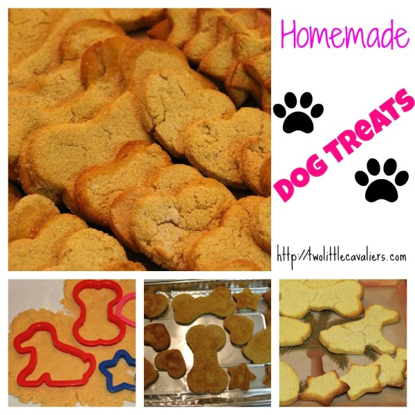 sweet potato squash Dog Treats