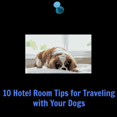 traveling and dogs tips for staying at a hotel