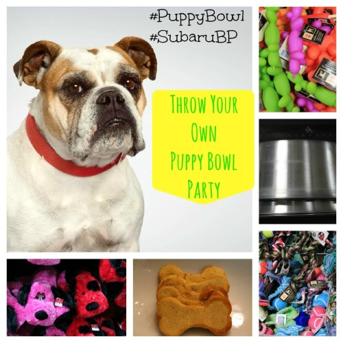 Puppy Bowl Party