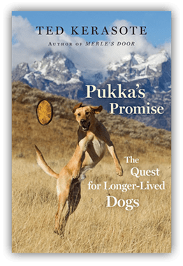 Pukka\u0027s Promise The Quest for Longer-Lived Dogs Review & Pukka and Ted Kerasote Go Skiing / Pet Bloggers Blog Hop