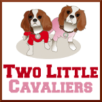Two Little Cavaliers – A Lifestyle Blog for Dogs and their Owners