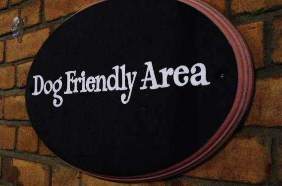 Dog Friendly Washington, DC