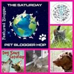 Visiting Friends Pet Bloggers Blog Hop