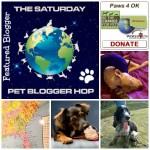 Pet Bloggers Blog Hop / Information About Pets