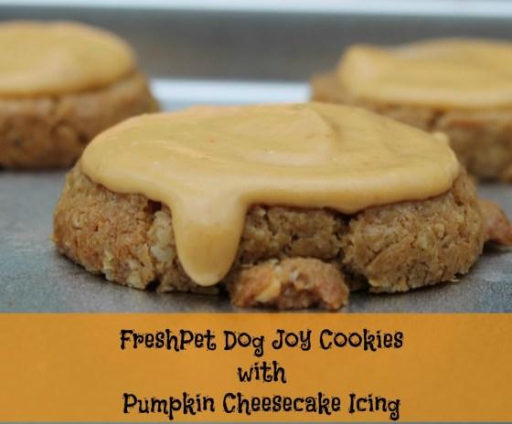 FreshPet Dog Joy Cookies with Pumpkin Cheesecake Icing