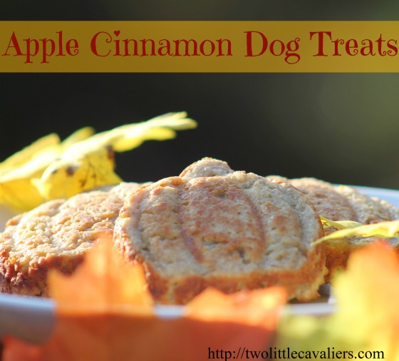 Make Your Own Apple Cinnamon Dog Treats