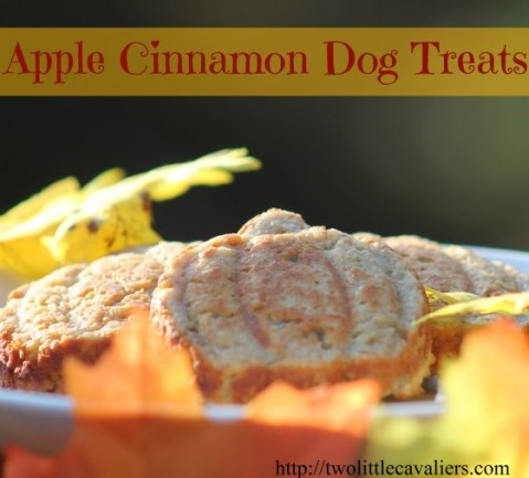 Make Your Own Apple Cinnamon Dog Treats Two Little Cavaliers