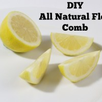 DIY All Natural Flea Comb