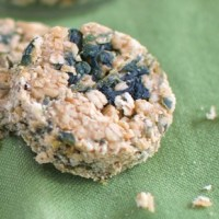 Easy Homemade Dog Treats - Spinach Oat Bars