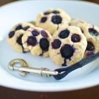 Muddy Paws - Blueberry Dog Treats #recipe #blueberries