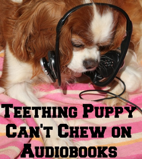 Teething Puppy Can't Chew on Audiobooks