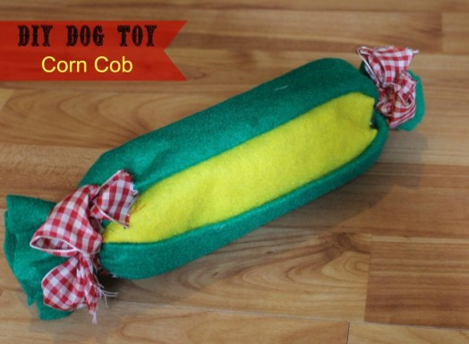 Water Bottle Dog Toy