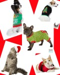 PetSmart Fashion For Every Season #FashionistaEvents