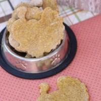 Homemade Thanksgiving Dog Treats