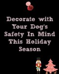 How to Prepare Your Dog for the Holidays Part 2