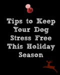 Tips to Keep Your Dog Stress Free This Holiday Season. How to Prepare Your Dog for the Holidays Part 1