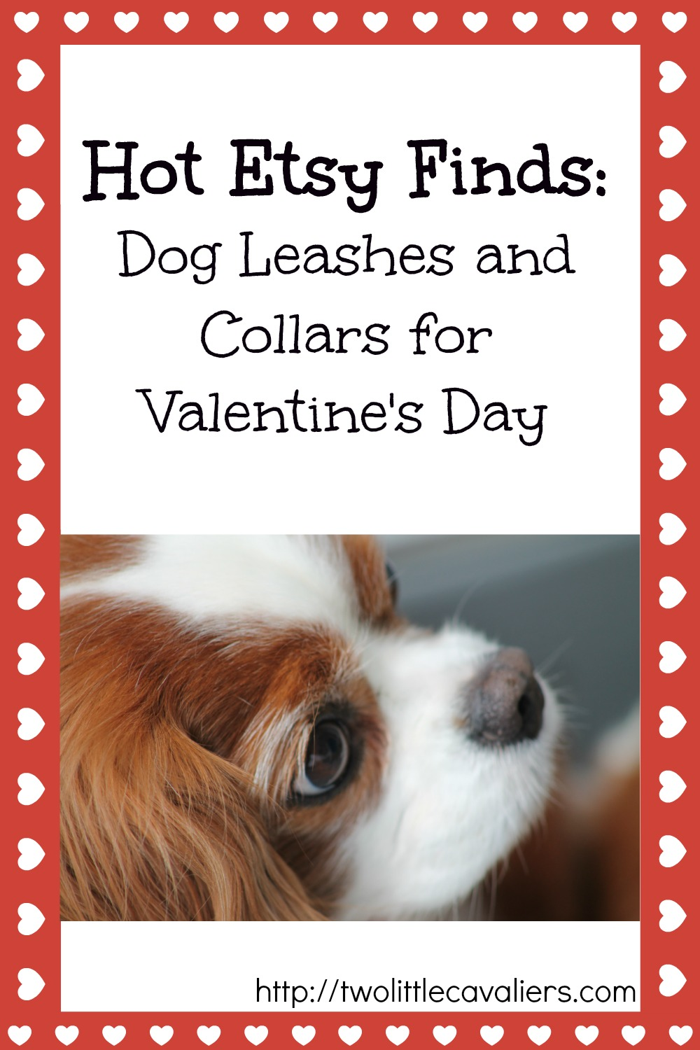 Hot Etsy Finds Dog Leashes and Collars for Valentines Day