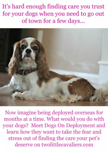 Learn more about Dogs on Deployment on twolittlecavaliers.com