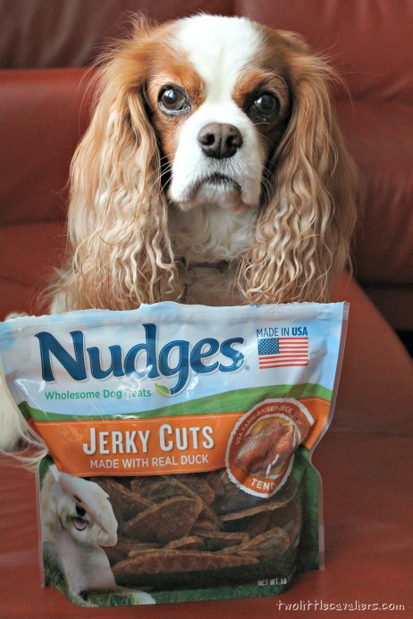 Nudges Jerky Cuts Perfect For Small Dogs #NudgeThemBack