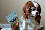 Nudges Dog Treats For Summer #NudgeThemBack
