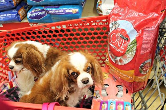 Tractor Supply Offers a Wide Range of Purina Products