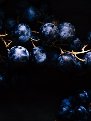 How to Guide: Create Dark Food Photography (With Just a Box)