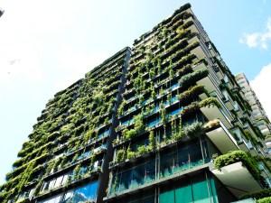 budynek z roślinami