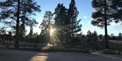 Photo of Sunset at Ponderosa Grove
