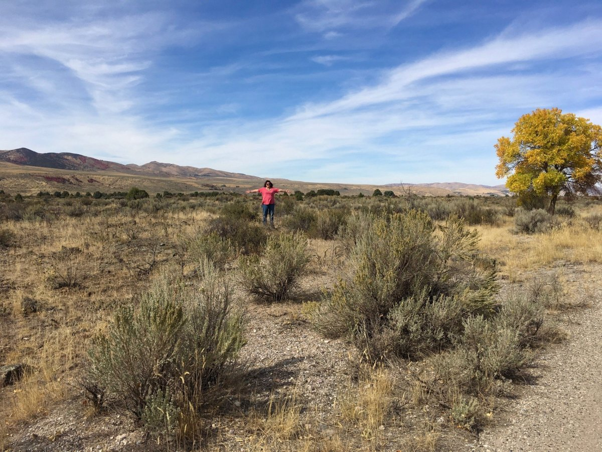 Campsite Review: Indian Rocks BLM Camping Area