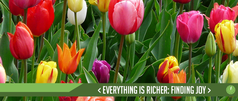 Everything is Richer – Finding Joy