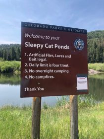 Sleepy Cat Pond Sign