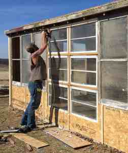 greenhouse construction, two oaks farmstead