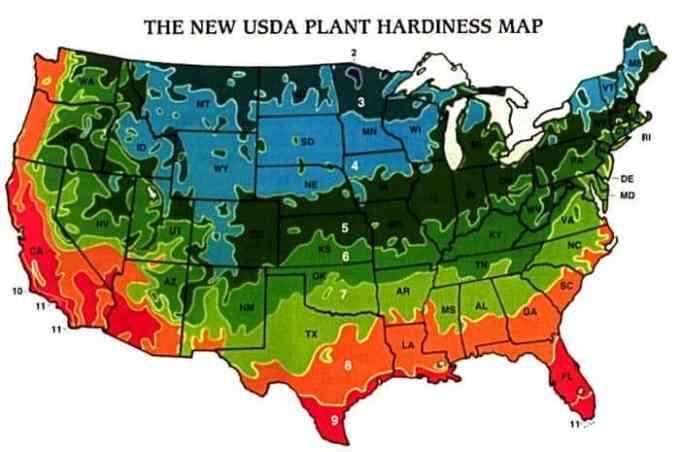gardening, plant zone