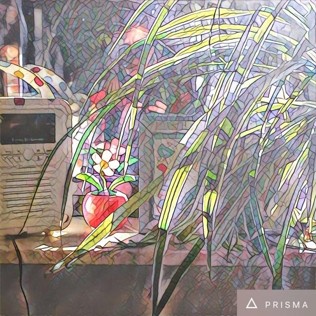 prisma Wekelijkse inspiratie - Foto's op blogs