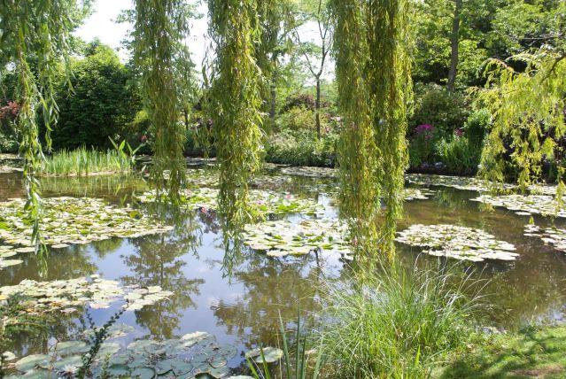 Waterlelies-in-de-tuin-van-Monet De tuin van Monet