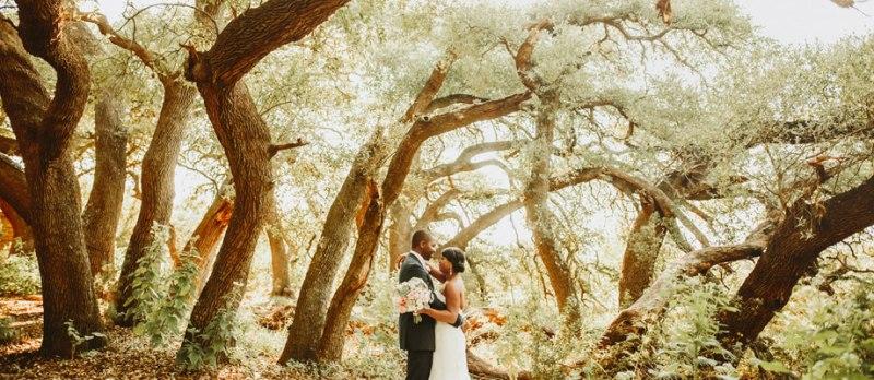 camp lucy sacred oaks wedding